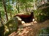 The Druids cave